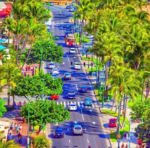 ハワイ新婚旅行でドライブ